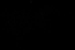 DSC_8467c