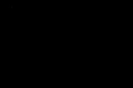 DSC_1953a